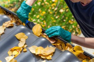 No More Having To Clean Out Leaves
