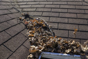 Scheduled Maintenance By Roofing Companies