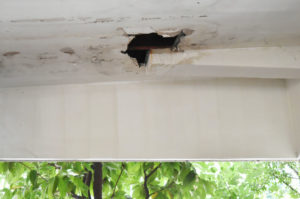 rainwater leaks from roof roofing companies fix